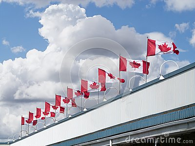 Canada flags on top of a building