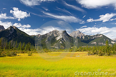 Canadian Landscape. Jasper National Park, Alberta