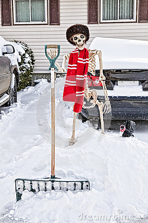 Canadian Skeleton