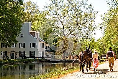 Canal mule team