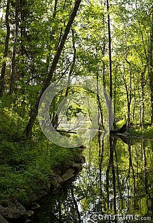 Canal in Solovki