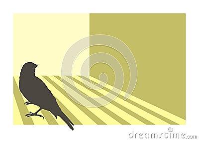 Canary bird 3