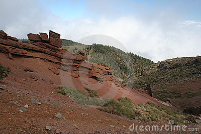 Canary Island La Palma