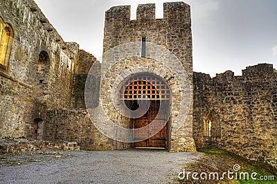 Cancello del castello di Adare - HDR