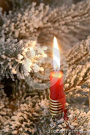 Candlelight on a christmas tree