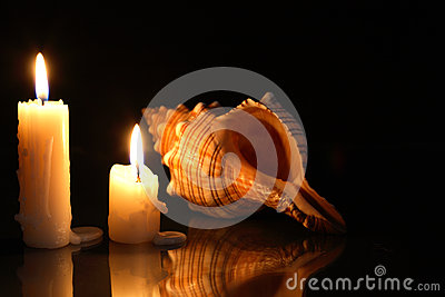 Candles And Shell