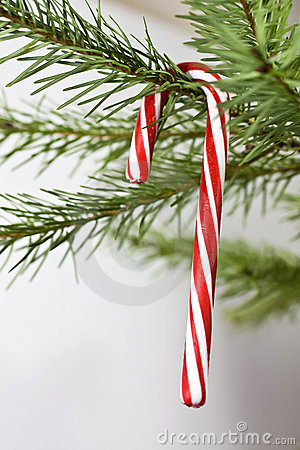Candy Cane Holiday Decoration
