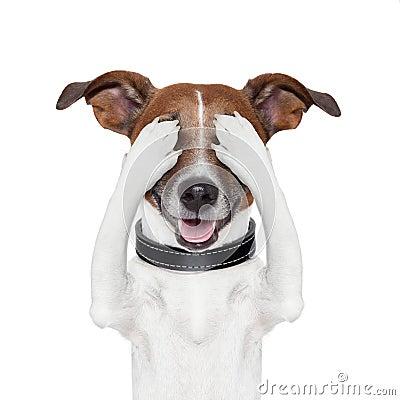 Cane nascondentesi dell occhio della copertura