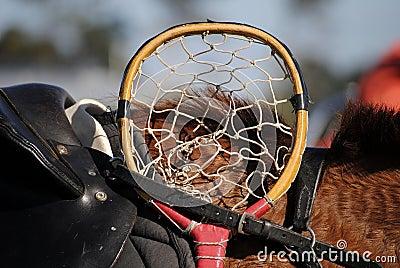 Cane Polocrosse Racquet head