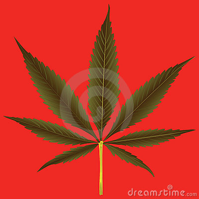 Cannabis leaf against orange background
