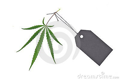Cannabis leaf with black tag