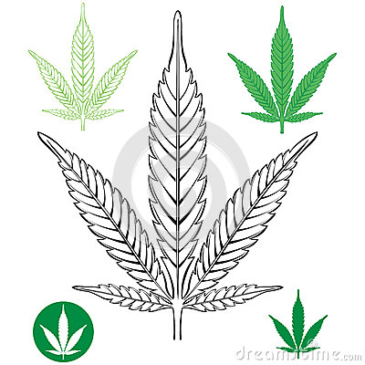 Marijuana Outline?