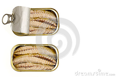 Canned tuna fillet with olive oil