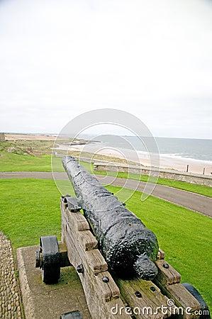 Cannon and the coast