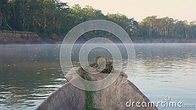 Canoa di guida lungo Misty Morning River a Safari Tour nel parco nazionale di Chitwan nel Nepal archivi video