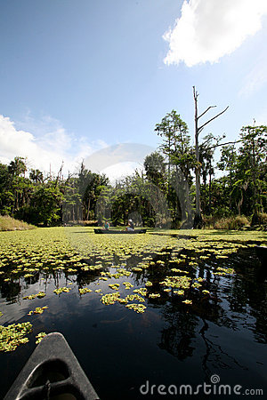 Free Canoe Trip Royalty Free Stock Image - 4741616