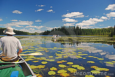 Canoeing through the Lily pads