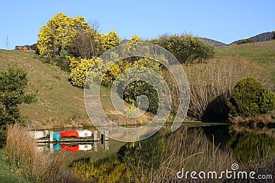Canoes on a lake, Australia