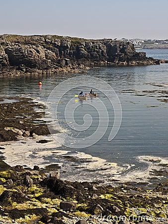 Canoes paddling on sea