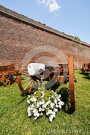 Canons near wall
