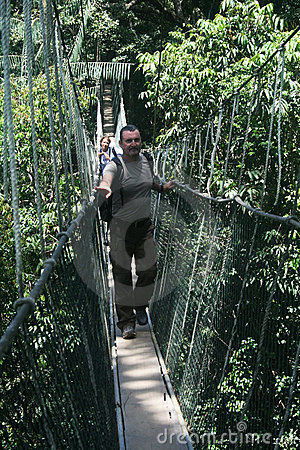 Canopy walk Editorial Stock Photo