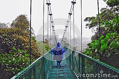 Canopy walk in Costa rica
