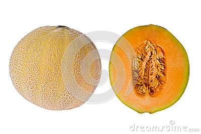 Cantelope (Cucumis melo)