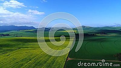 Cantidad aérea de campos vegetados en Suráfrica almacen de metraje de vídeo