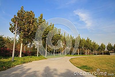 Canto no parque olímpico, Beijing