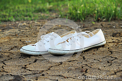 Canvas Shoes White