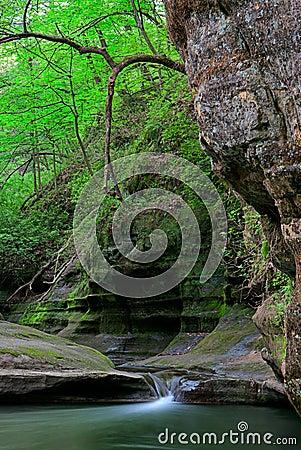 Canyon di Illinois