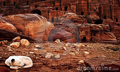 Canyon of Petra, Jordan