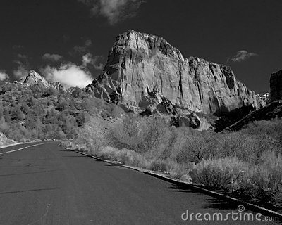 Canyon Road - Black and White
