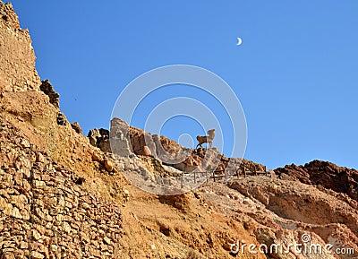 Canyon Tunisia, Africa
