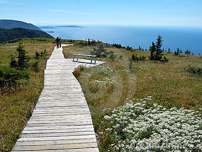 Cape Breton scenic trail with coastline view
