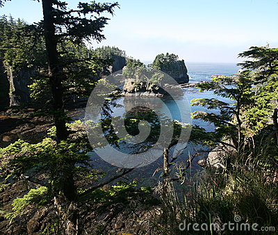 Cape Flattery in Olympic national park