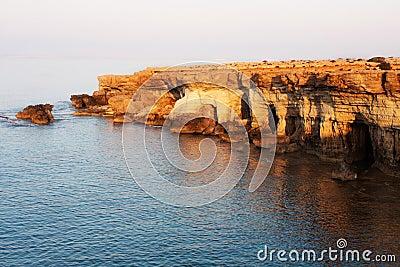 Cape Greko