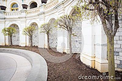 Capital Trees