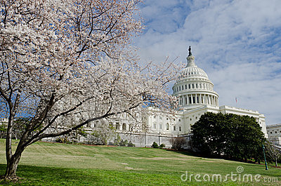 Capitol Building in Washington DC USA in spring