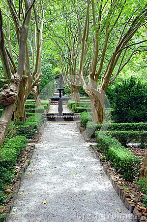Capitol Hill Garden