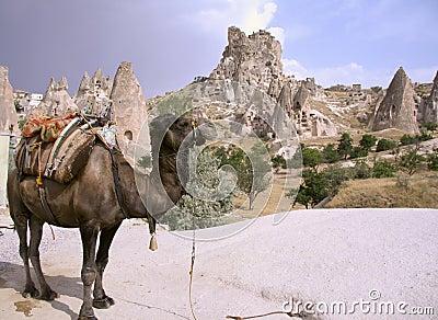 Cappadocia rock landscapes