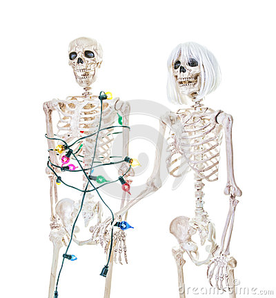 Captive Christmas Skeleton