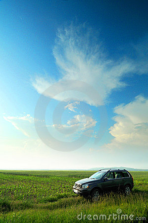 Car in corn field
