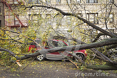 Car damaged by Hurricane Sandy Editorial Photo