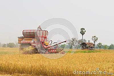 Car harvest