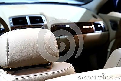 Car / leather interior