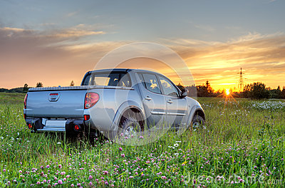 Car in the meadow