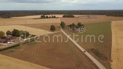 Car moving on countryside rural road among cereal wheat fields and farmhouses. And barns on a cloudy summer day. Aerial footage stock footage