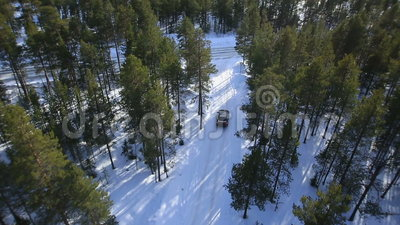 The car rides on a winter road among the woods and stock video