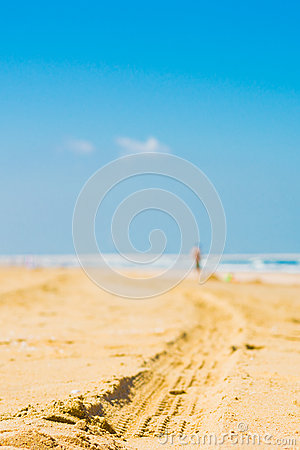 A car trail on the beach